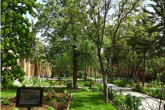حیاط شیخ صفی
